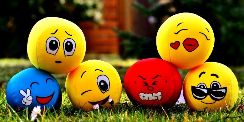 El desarrollo de la emociones