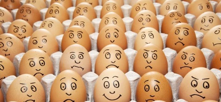 Teorías sobre la psicología de la emoción